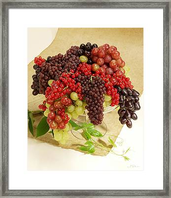 Fresh Grapes  Framed Print by Iris Richardson