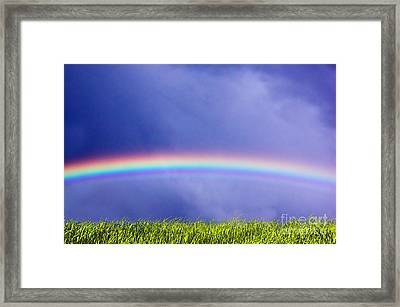 Fresh Grass And Sky With Rainbow Framed Print by Michal Bednarek