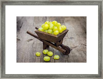 Fresh Green Grapes In A Wheelbarrow Framed Print