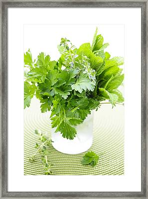 Fresh Herbs In A Glass Framed Print by Elena Elisseeva