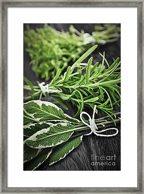Fresh Herbs In Bunches Framed Print by Elena Elisseeva