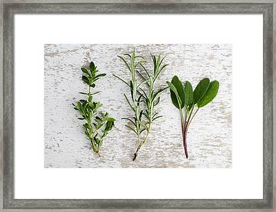 Fresh Herbs Framed Print by Nailia Schwarz
