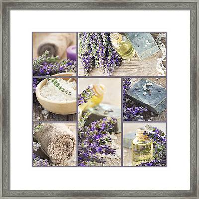 Fresh Lavender Collage Framed Print by Mythja  Photography