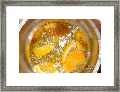 Fresh Lemonade Framed Print