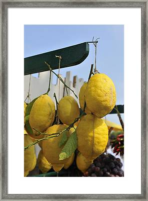 Fresh Lemons At The Market Framed Print