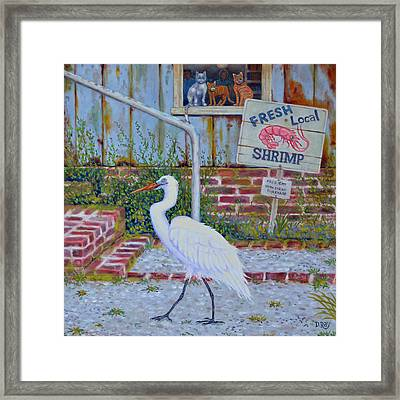 Framed Print featuring the painting Fresh Local Shrimp  by Dwain Ray