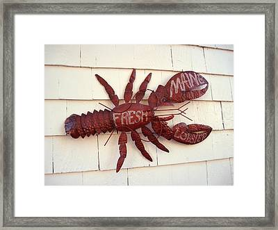 Fresh Maine Lobster Sign Boothbay Harbor Maine Framed Print