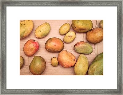 Fresh Mangos Framed Print by Tom Gowanlock