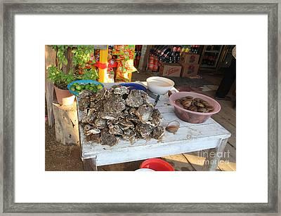 Fresh Oysters Barre De Navidad Framed Print by Linda Queally