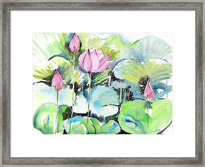 Fresh Pick No.389 Framed Print