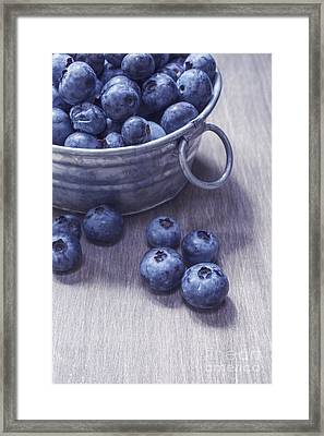 Fresh Picked Blueberries With Vintage Feel Framed Print