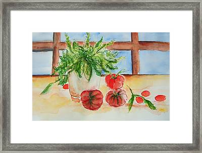 Fresh Picked Tomatoes And Basil Framed Print by Elaine Duras