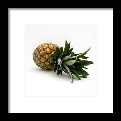 Ananas Comosus Art Pixels