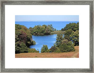 Fresh Pond At Caumsett Framed Print