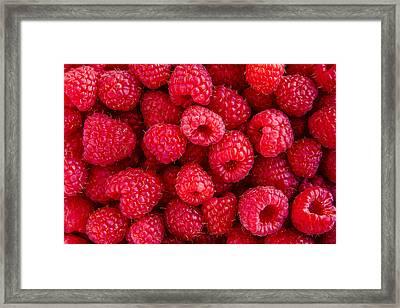 Fresh Raspberries Framed Print by Teri Virbickis