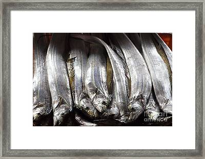 Fresh Ribbonfish For Sale In Taiwan Framed Print