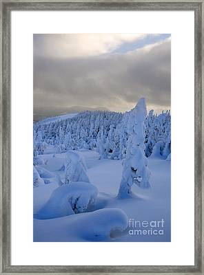 Fresh Snow Framed Print by Colin Woods