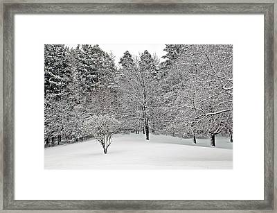 Fresh Snow Scene Framed Print by Aimee L Maher Photography and Art Visit ALMGallerydotcom