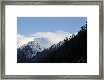 Framed Print featuring the photograph Fresh Snow by Sylvia Hart