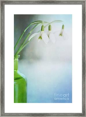 Fresh Spring Framed Print by Priska Wettstein