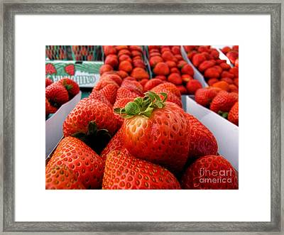 Fresh Strawberries Framed Print by Peggy Hughes
