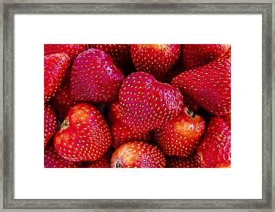 Fresh Strawberries Framed Print by Teri Virbickis