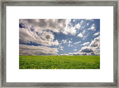 Fresh Summer Landscape Framed Print by Ioan Panaite