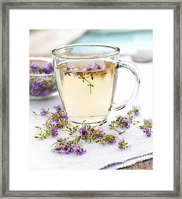 Fresh Thyme Tea Framed Print by Elena Elisseeva