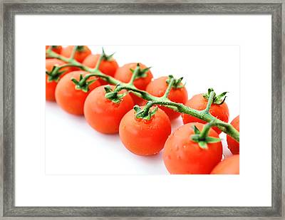 Fresh Tomatoes Framed Print