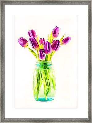 Fresh Tulips Framed Print by Darren Fisher