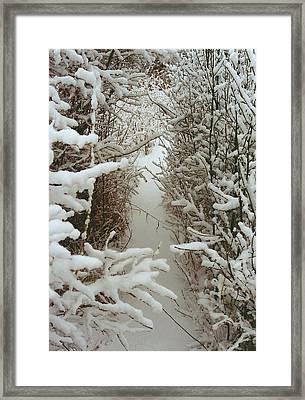 Freshly Fallen Snow Framed Print