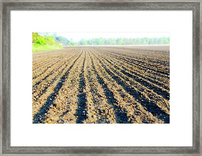 Freshly Ploughed Field Framed Print by Wladimir Bulgar