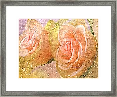 Freshly Watered Roses Framed Print