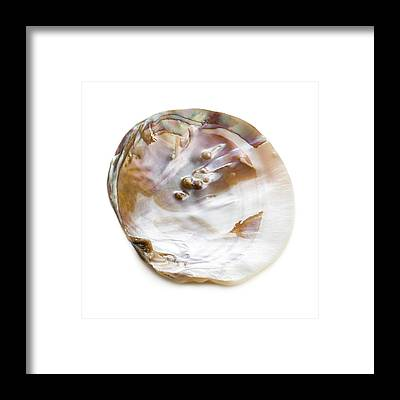 Freshwater Pearls Framed Prints