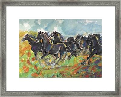 Fresian Glory Framed Print by Mary Armstrong