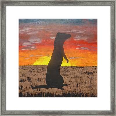 Frettaluna The Ferret Framed Print by Kansas Campbell
