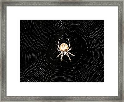 Friend At Indian Gardens Framed Print