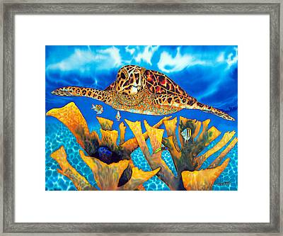 Friendly Hawksbill Sea Turtle Framed Print