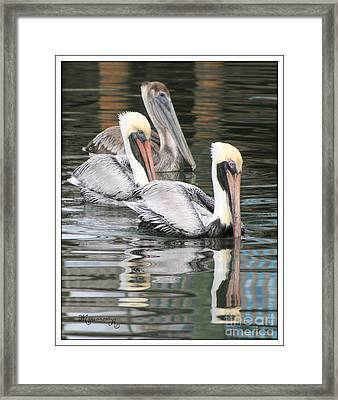 Friendly Stroll Framed Print