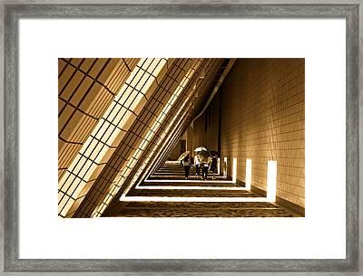 Friendly Walk Framed Print by Richard WAN
