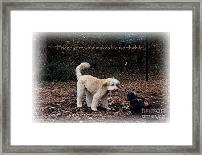 Friends 2 Framed Print