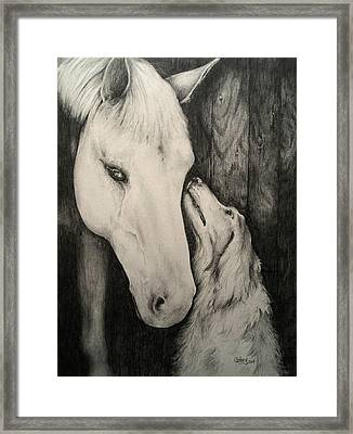 Friends Framed Print by Catherine Howley