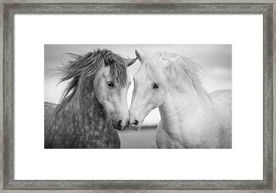 Friends Iv Framed Print
