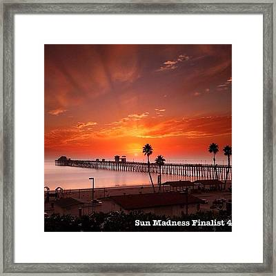 Friends, One Of My Photos In The Framed Print by Larry Marshall