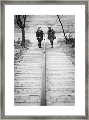 Friends Framed Print by Pablo Lopez