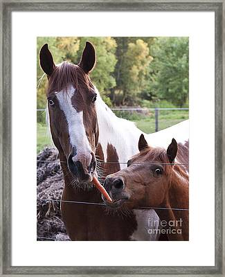 Friends Share Framed Print by Lee Craig