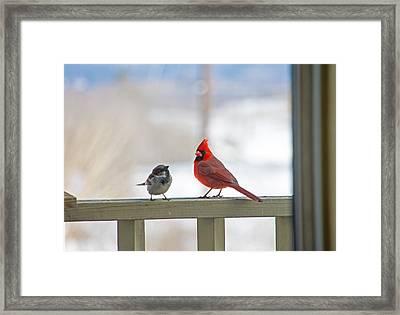 Friends Framed Print by Wayne Stabnaw