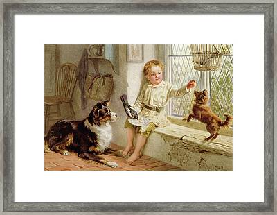 Friends  Framed Print by Helena J Maguire