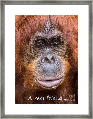 Friendship Card Framed Print by Edward Fielding