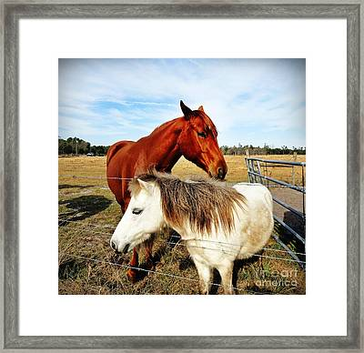 Friendship Framed Print by Ines Bolasini